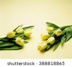 bouquet of tulips on vintage... | Shutterstock . vector #388818865