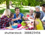 family and friends having a... | Shutterstock . vector #388825456