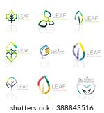 linear leaf abstract logo set ... | Shutterstock .eps vector #388843516