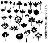 black and white decorative... | Shutterstock .eps vector #388911472