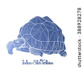 Graphic Indian star tortoise drawn in line art style isolated on white background. Geochelone elegans. Rare turtle pet in blue colors.  Coloring book page design