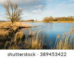 Dutch Nature Reserve With A...
