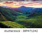 sunrise over sungai palas tea... | Shutterstock . vector #389471242