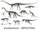 Set Of Silhouettes Of Skeleton...