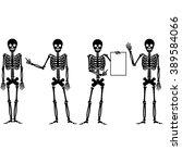 Skull  Flat Skeleton