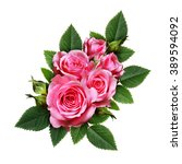 pink rose flowers composition... | Shutterstock . vector #389594092