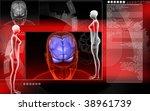 digital illustration of  brain... | Shutterstock . vector #38961739