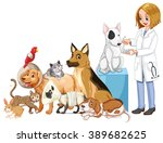 vet and many injured animals... | Shutterstock .eps vector #389682625