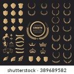 crest logo element set set of ... | Shutterstock .eps vector #389689582