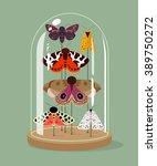 vintage taxidermy moths... | Shutterstock .eps vector #389750272