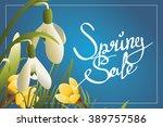 spring sale lettering... | Shutterstock .eps vector #389757586