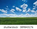 Farmland. Wheat Field Against...