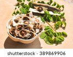 Moringa Seeds With Leaves And...