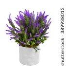 lavender in vase isolated on... | Shutterstock . vector #389938012