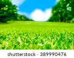 close up green grass field with ... | Shutterstock . vector #389990476