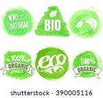 vector natural  organic food ... | Shutterstock .eps vector #390005116