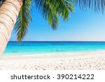 tropical white sand beach with... | Shutterstock . vector #390214222