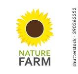 logo with sunflower  vector... | Shutterstock .eps vector #390262252