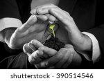 female hands holding fertile...   Shutterstock . vector #390514546