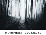 bright light in misty forest | Shutterstock . vector #390526762