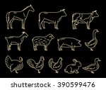vector thin line farm animals... | Shutterstock .eps vector #390599476