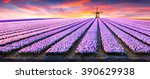 dramatic spring scene on the... | Shutterstock . vector #390629938