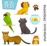 Stock vector home pets set isolated on white cat dog parrot goldfish hamster ferret cartoon vector 390654946