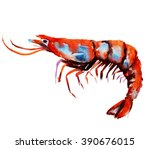 watercolor shrimp. sea food... | Shutterstock . vector #390676015
