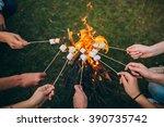 marshmallow on skewers | Shutterstock . vector #390735742