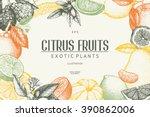 vintage template. ink hand... | Shutterstock .eps vector #390862006