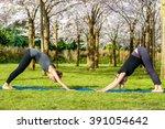 two women practicing essential... | Shutterstock . vector #391054642