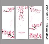 Cherry Blossom Collection  ...