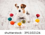 dog with eggs on wooden old... | Shutterstock . vector #391102126