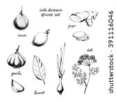 ink drawn vector set of... | Shutterstock .eps vector #391116046