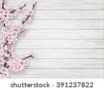 pink cherry blossom branch on... | Shutterstock .eps vector #391237822