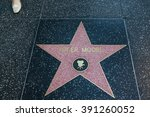hollywood  california  ... | Shutterstock . vector #391260052