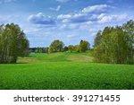 spring  green landscape | Shutterstock . vector #391271455