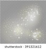 vector dust on a transparent... | Shutterstock .eps vector #391321612