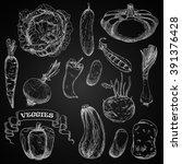 sketches of farm vegetables on... | Shutterstock .eps vector #391376428