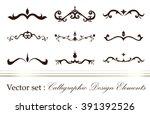 set of vector graphic elements... | Shutterstock .eps vector #391392526