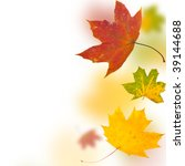 autumn background from leaves... | Shutterstock . vector #39144688