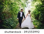bride and groom in a park... | Shutterstock . vector #391553992