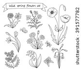 Set Of Hand Drawn Wild Spring...