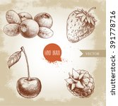 hand drawn sketch style berries ... | Shutterstock .eps vector #391778716