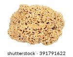 Natural Sea Sponge With...