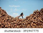 business vision   hardworking... | Shutterstock . vector #391947775