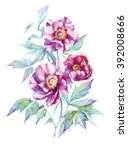 pink peonies  botanical... | Shutterstock . vector #392008666