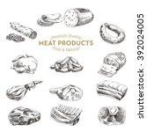 vector hand drawn illustration... | Shutterstock .eps vector #392024005