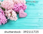 pink hyacinths  and  decorative ... | Shutterstock . vector #392111725