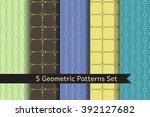 set of 5 geometric patterns... | Shutterstock .eps vector #392127682